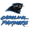 Carolina Panthers Bowling Towel by Master